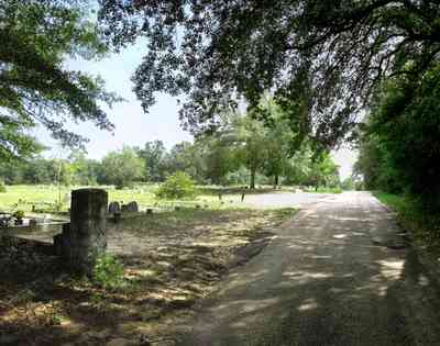 Bagdad:-Cemetery_04.jpg:  oak tree, spanish moss, country road, two-lane road, canopy of trees, dense forest, graveyard, cemetery, headstone,