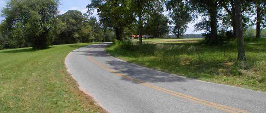 Blackwater-River-State-Park:-Indian-Ford-Road_02.jpg:  county road, oak trees, two-lane highway, two-land road, farmland, farm, pasture