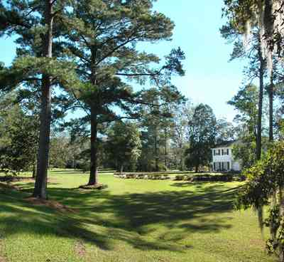 Century:-7542-South-Jefferson-Avenue_03.jpg:  colonial home, pediment, formal doorway, pine tree, azelea bush, spanish moss, country estate