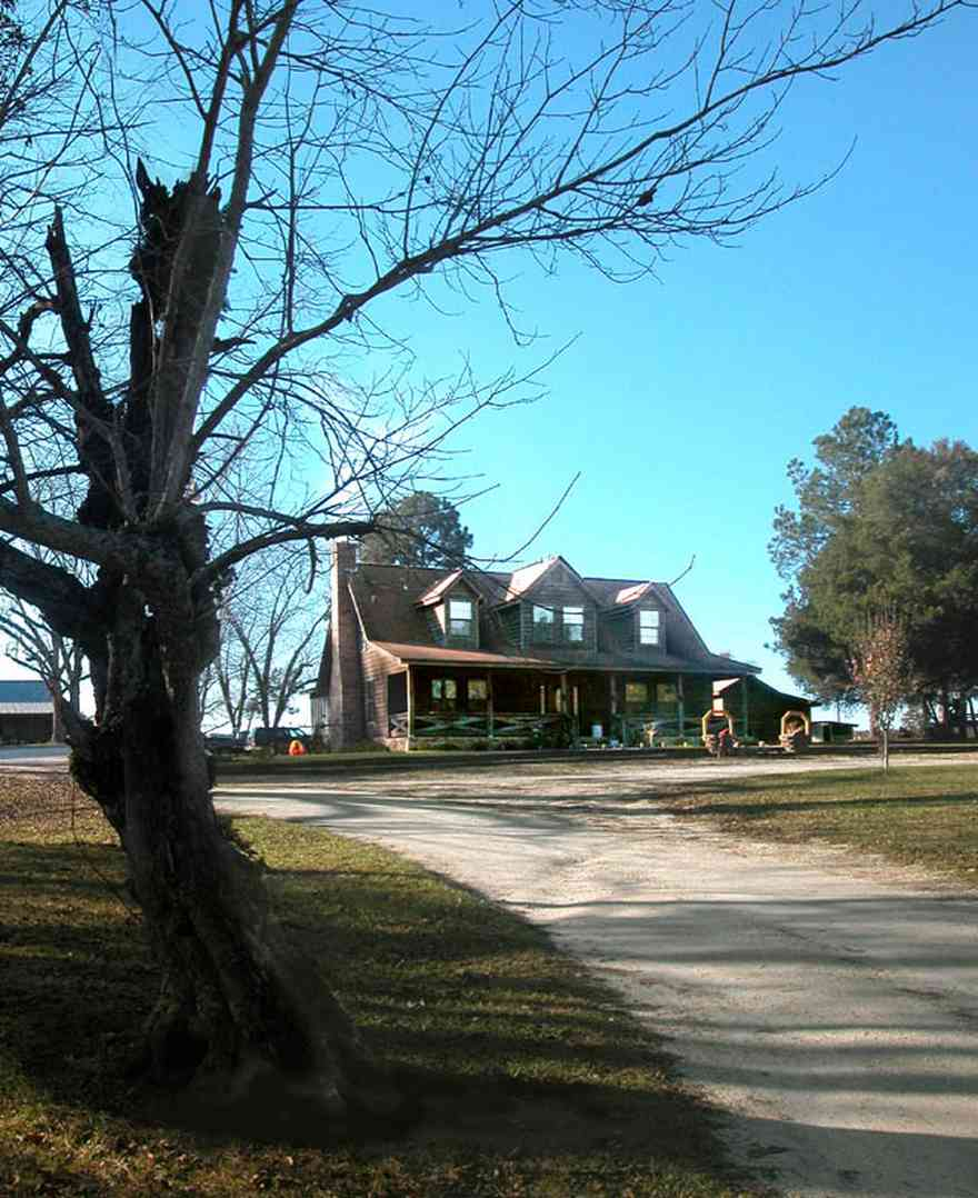 Century:-Brown-Farm_01.jpg:  cabin, wood siding, chimney, fireplace, gnarled tree, gravel driveway, cedar siding, pine trees barn, porch