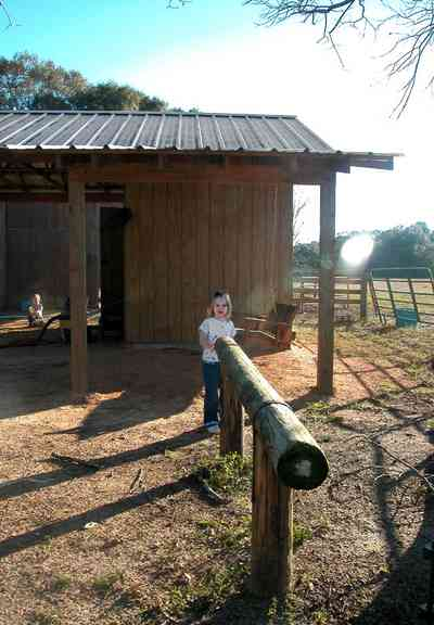 Century:-Brown-Farm_10.jpg:  hitching post, barn, horses, children, toddler, fence, tin roof, farm, hay field