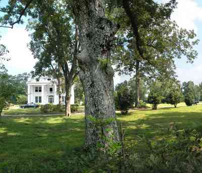 Century:-Tannenheim_03.jpg:  victorian mansion, southern mansion, white columns, heart pine wood, tongue and groove walls, pasture, lake pecan orchard, plantation, rolling pastures, timber, country road
