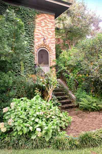 East-Hill:-1801-East-La-Rua-Street_03.jpg:  front door, brick steps, brick house, hydranga bush, oak tree, crepe myrtle