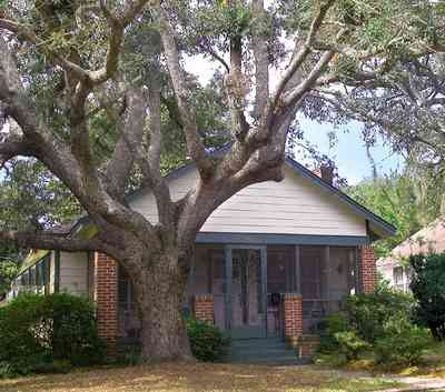 East-Pensacola-Heights:-2900-Jackson-Street_04.jpg:  craftsman cottage, brick columns,  oak tree, spanish moss, chain link fence, front porch