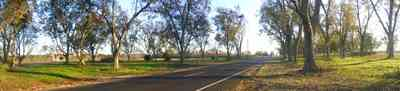 Elberta:-Kleinschmidt-Road-Truck-Farm_10.jpg:  country road, pecan orchard, truck farm, alabama, highway