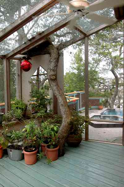 Gulf-Breeze:-92-High-Point-Drive_18.jpg:  screened-in porch, oak tree, potted plants, swimming pool, gulf overlook, deck,