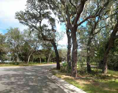 Gulf-Breeze:-Peakes-Point_03.jpg:  winding road, bayshore, development, oak trees, subdivision,  pensacola bay