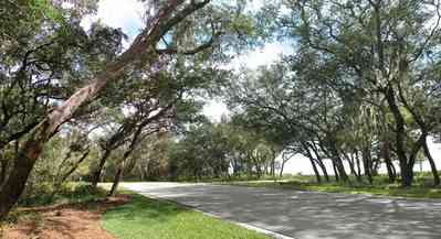 Gulf-Breeze:-Peakes-Point_05.jpg:  winding road, bayshore, development, oak trees, pensacola bay