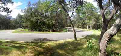 Gulf-Breeze:-Peakes-Point_07.jpg:  winding road, bayshore, development, oak trees, pensacola bay