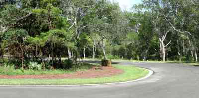 Gulf-Breeze:-Peakes-Point_08.jpg:  winding road, bayshore, development, oak trees, pensacola bay