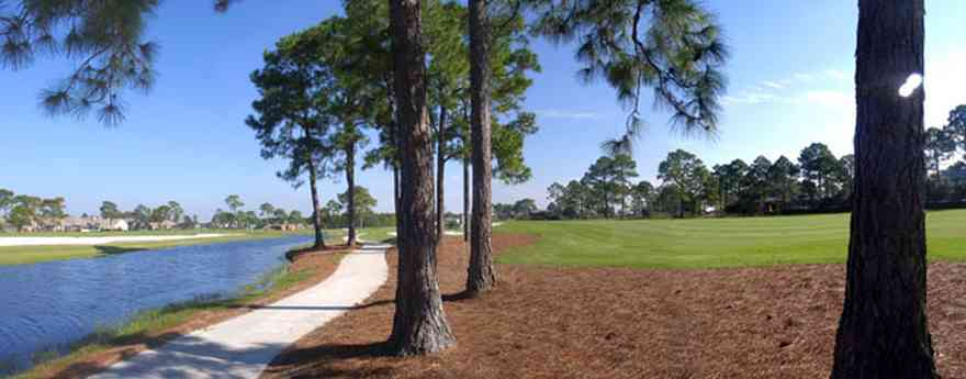 Gulf-Breeze:-Tiger-Point-Golf-Club_04.jpg:  short leafed pine trees, lagoon, pine straw ground cover, golf course, fairway