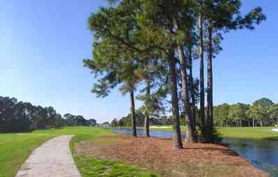 Gulf-Breeze:-Tiger-Point-Golf-Club_05.jpg:  golf course, fairway, lagoon, short leaf pine tree, fairway