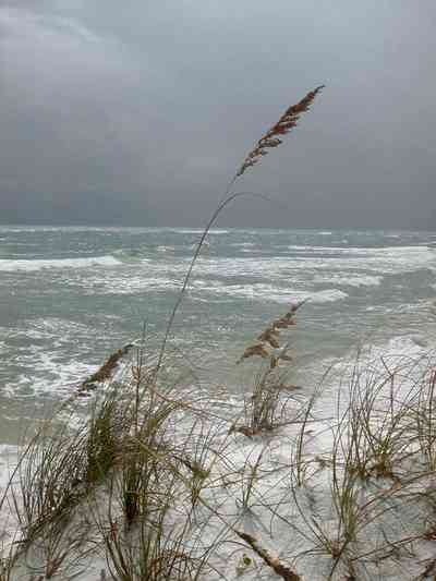 Gulf-Islands-National-Seashore:-Fort-Pickens:-Battery-234_02.jpg:  sea oats, dunes, surf, crystal white sand, barrier island, gulf of mexico, tropical storm, beach habitat, storm
