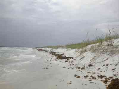 Gulf-Islands-National-Seashore:-Fort-Pickens:-Battery-234_07.jpg:  dunes, sea oats, sea weed, surf, barrier island, gulf of mexico, crystal sand