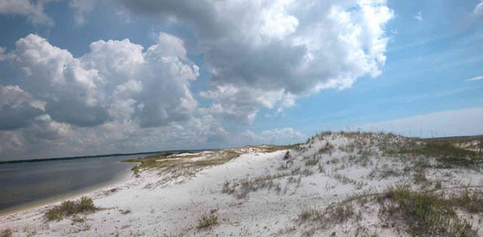 Gulf-Islands-National-Seashore:-Perdido-Key:-Boardwalk-I_02.jpg:  sand dunes, cumulus clouds, sea oats, barrier island, national park, quartz sand