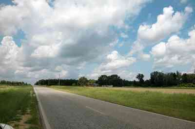 Hollandtown:-Holland-Farm:-North-Field_04.jpg:  country road, two-lane road, fields, cotton, peanut crop