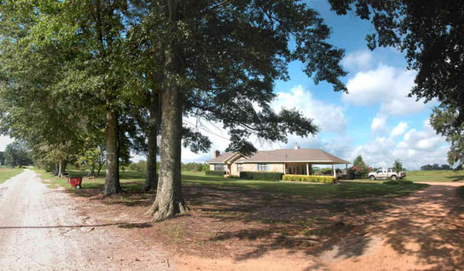 Hollandtown:-Holland-Farm:-South-Field_05.jpg:  water oak trees, farmhouse, truck, dirt road, country road, farm, farmer