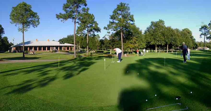 Marcus-Point:-Golf-Club_01.jpg:  golf course, fairway, green, pine tree