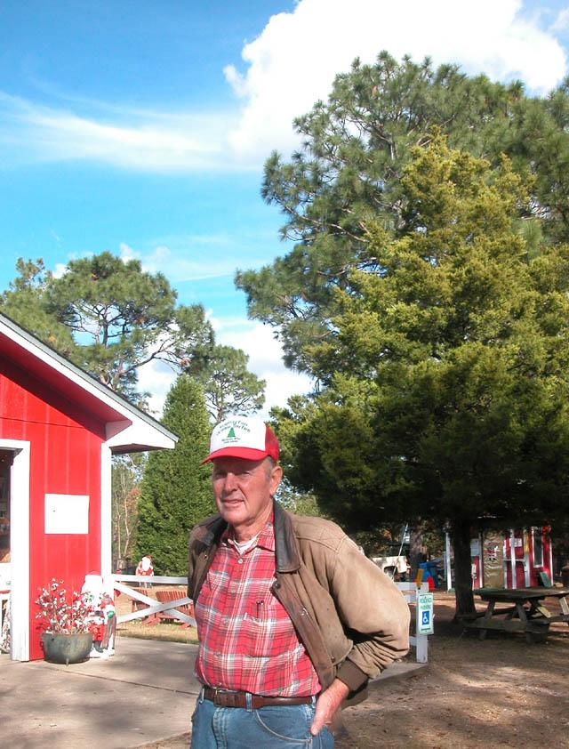 Christmas Tree Farm At Film North Florida Pensacola Bay Area  - Bay Area Christmas Tree Farms