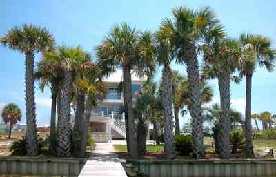 Navarre:-7332-Grand-Navarre-Blvd_06.jpg:  sea wall, deck, dock, pier, palm trees, beach house