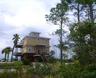 Navarre:-Biscayne-Pointe-Drive-House_06.jpg:  palm tree, pine tree, house, water, beach, swamp, wet land