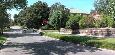 North-Hill:-105-West-Gonzales-Street_75.jpg:  stone wall, historic neighborhood, pear tree, crepe myrtle tree, oak tree
