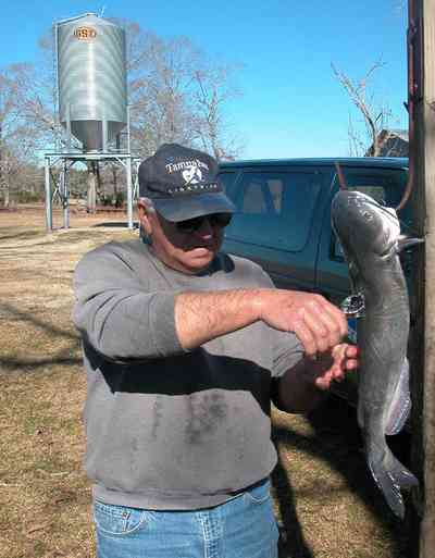 Oak-Grove:-Carpenters-Catfish-Farm_07aa.jpg:  cleaning catfish, gaffing hook, silo, catfish farm