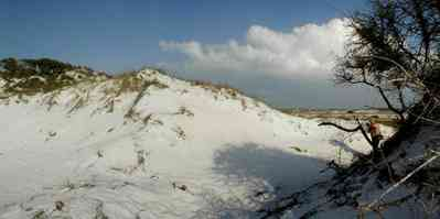 Pensacola-Beach:-Dunes_04.jpg:  santa rosa island, gulf of mexico, gulf islands national seashore, escambia county, cumulus clouds, beach, sand dunes, emerald coast