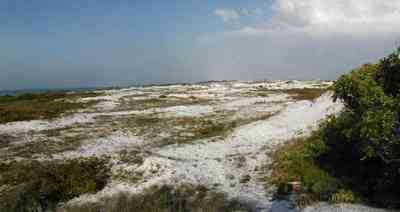 Pensacola-Beach:-Dunes_06.jpg:  santa rosa island, gulf of mexico, gulf islands national seashore, escambia county, cumulus clouds, beach, sand dunes, emerald coast