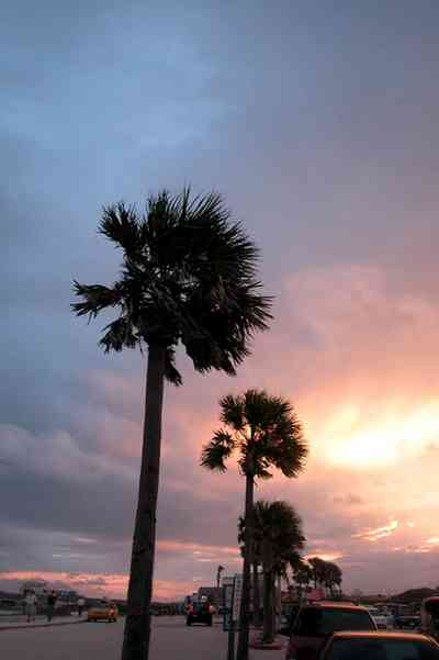 Pensacola-Beach:-Sunset_08.jpg:  palm tree, sunset, tropical storm, mixed skies, parking lot, amphitheater, island authority, sheriff station,