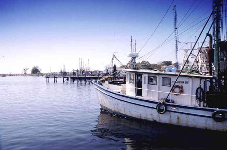 Pensacola:-Downtown:-Joe-Patti-Seafood_01.jpg:  fishing boat, pensacola bay, escambia bay, bayfront, seafood store,