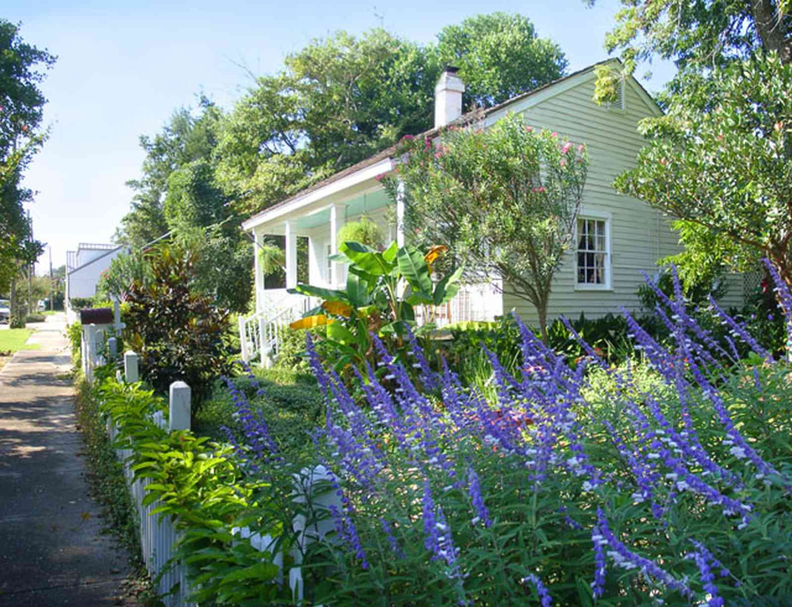 Pensacola:-Seville-Historic-District:-211-South-Florida-Blanca-Street_03.jpg:  butterfly bush, orleander bush, creole cottage, picket fence