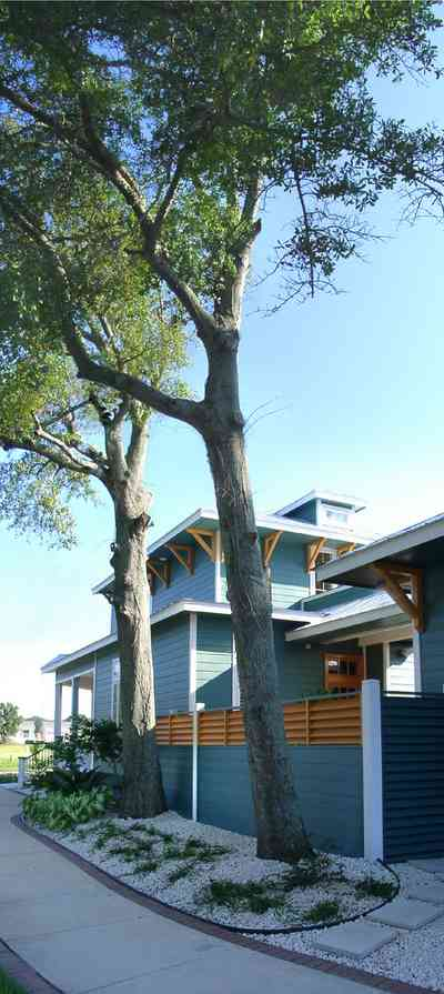 Pensacola:-Seville-Historic-District:-501-East-Romana-Street_02.jpg:  cottage, house, home, oak tree