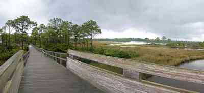 Perdido-Key:-Big-Lagoon-Recreational-Area_10.jpg:  wooden walkway, bridge, deck, pier, marsh, saltmarsh, bayou, pine trees, sawgrass, state park, recreational area, perdido key