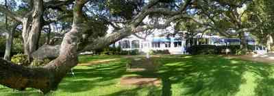 Sanders-Beach:-Pensacola-Yacht-Club_02.jpg:  oak tree, sail, lawn, club