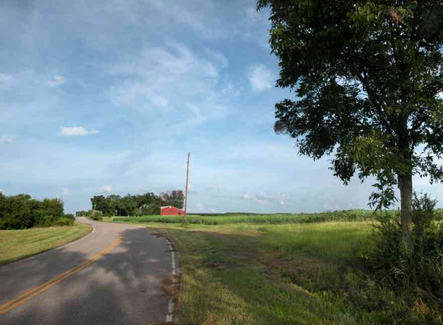 Walnut-Hill:-4821-Morgan-Road_00.jpg:  pecan tree, cotton field, country road, farmland, red barn, farmer, menonite farm