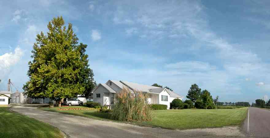Walnut-Hill:-5490-Arthur-Brown-Road_01.jpg:  sycamore tree, farmhouse, country road, two-lane road, barn, silo, farmhouse, gravel driveway