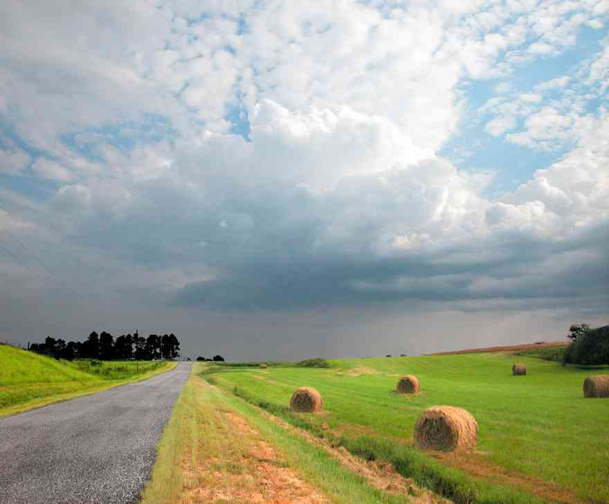 Kansas-Road-Fields-card_02.jpg:  farm, hay, round bale, cumulus cloud, pasture, rolling hills, farm
