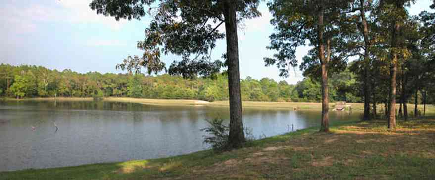 Walnut-Hill:-Wiggins-Lake_01.jpg:  pine trees, oak trees, levee, spillway, lake