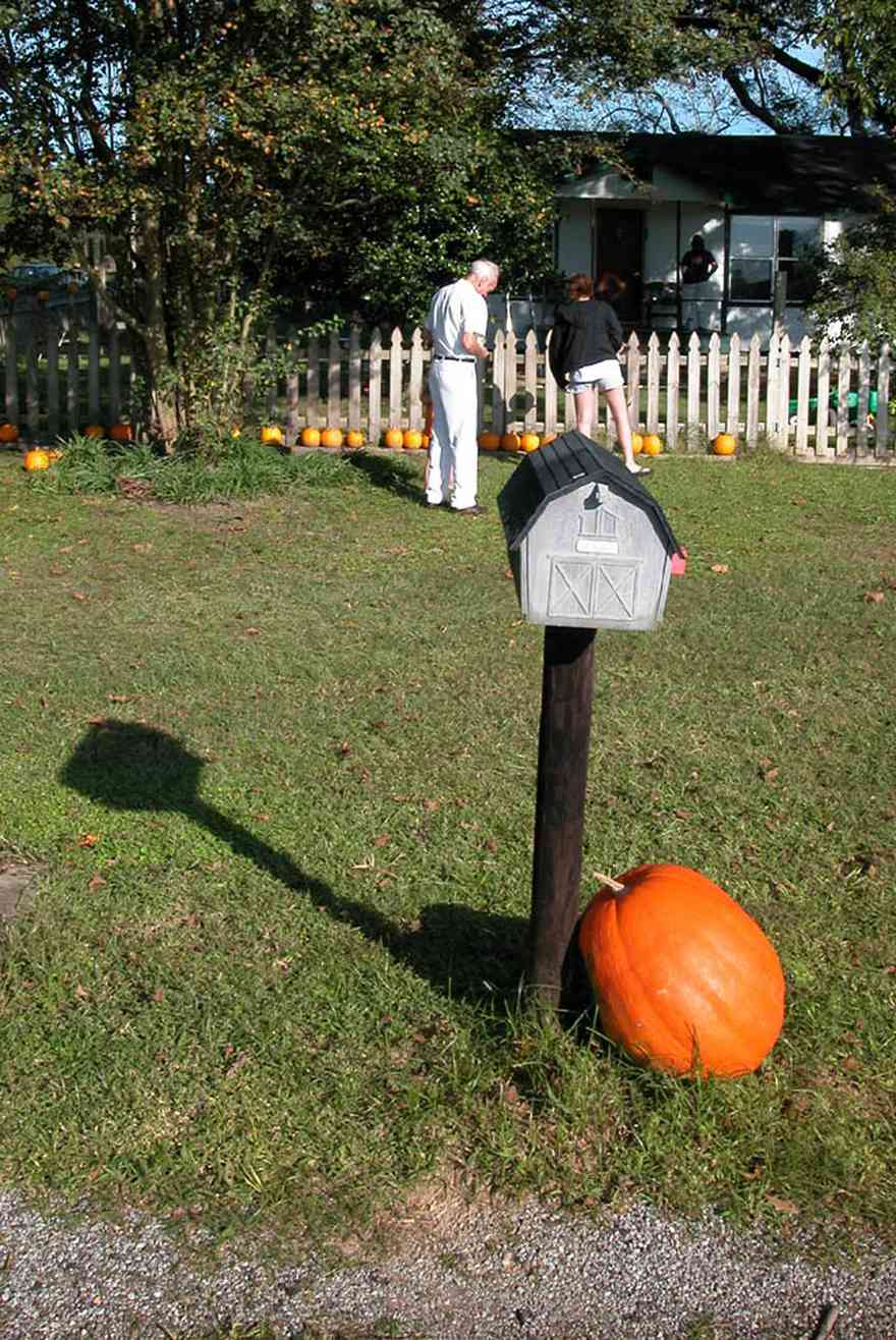 Whitfield-Community:-Whitfield-Farm-Giant-Pumpkin-Patch_00.jpg:  pumpkins, mailbox, picket fence, curbside sales, farmer, farming