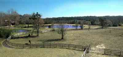 Allentown:-Bloechle-Farm_01.jpg:  farm, paddock, horse farm, oak tree, catfish pond, stable,