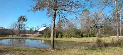 Allentown:-Bloechle-Farm_02.jpg:  pond, laek, oak trees, horse farm, board fencing, barn,
