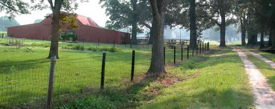 Allentown:-Double-H-Ranch_01.jpg:  gate, archway, fence line, oak tree, old red barn, dirt road, haze, fog, ranch, farmland,
