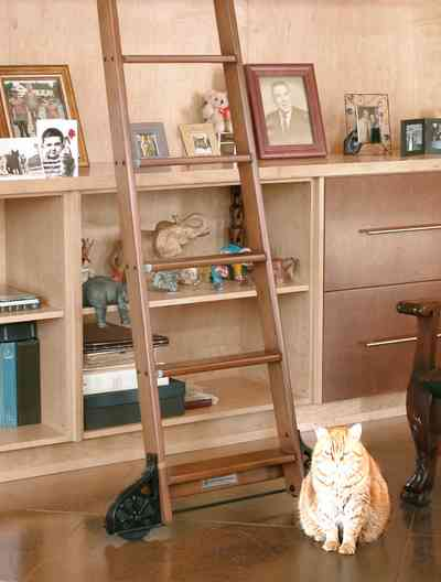Aragon:-649-Aragon-Street_09.jpg:  tabby cat, library ladder, wooden bookcases, painted floor, cabinets, retro design