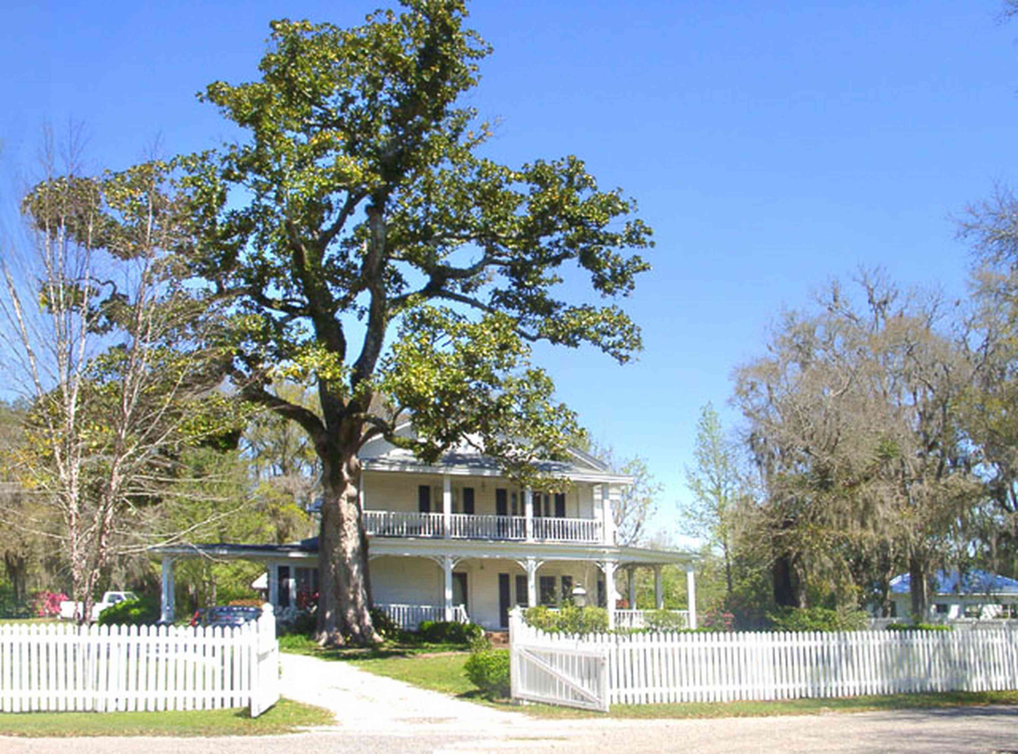 Bagdad:-Creary-Crawford-Walsh-House_01.jpg:  magnolia tree, victorian house, picket fence,