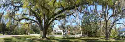 Bagdad:-Creary-Crawford-Walsh-House_07.jpg:  oak tree, victorian house, spanish moss, white picket fence, bagdad