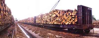 Brewton:-Jefferson-Smurfit-Company_6.jpg:  train, boxcar, logs, pulpwood, brewton