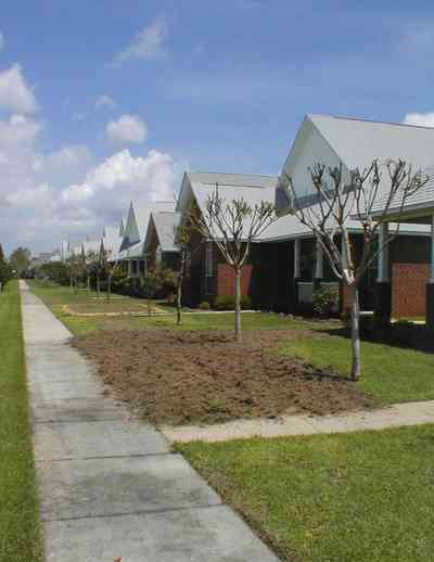 Cantonment:-Milestone_12.jpg:  cumulus clouds, oak trees, boulevard, tract houses, fir trees, brick housesgarden