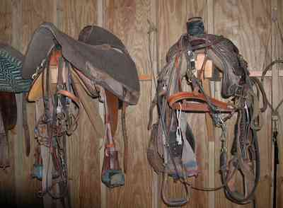 Century:-Brown-Farm_09.jpg:  saddle, tack room, horse, farm, rodeo rider