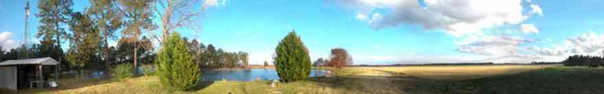 Davisville:-Beck-Sod-Farm_01.jpg:  catfish pond, fir tree, shed, windmill, sod, turf